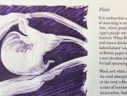 violet_typelino